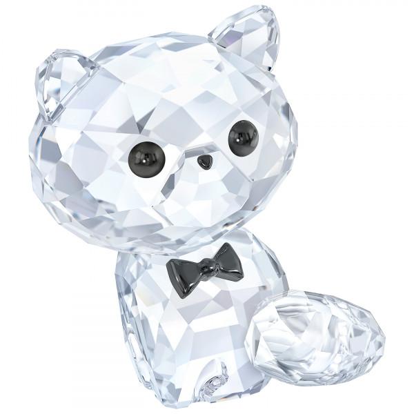 SWAROVSKI kristalliesine Kitten - Cornelius the Persian 5223600