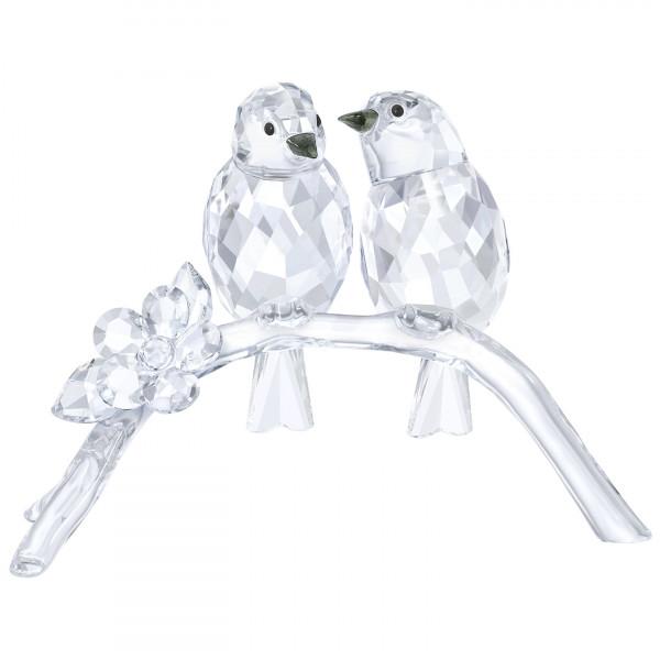 SWAROVSKI kristalliesine Linnut - White Eyes 5249843
