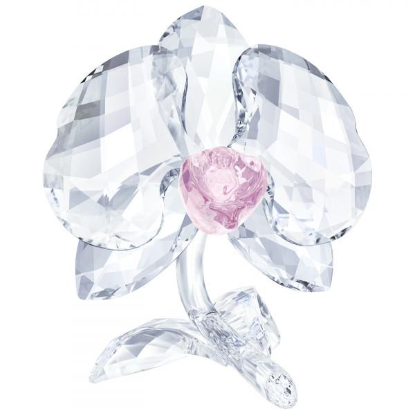 SWAROVSKI Orkidea 5301562