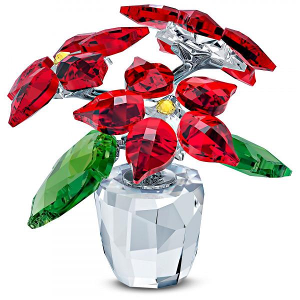SWAROVSKI Joulutähti Poinsettia 5538626